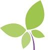Logo groen_paars-vlinder klein